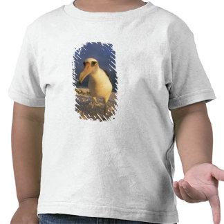 Immutabilis del albatros, de Diomedea de Laysan), Camisetas