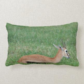 impala-1 pillows