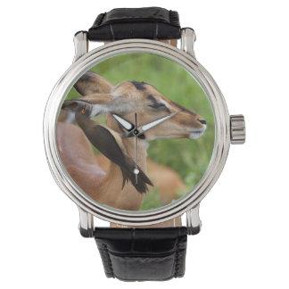 Impala (Aepyceros Malampus) Juvenile Wristwatch