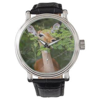 Impala (Aepyceros Malampus) Wristwatch
