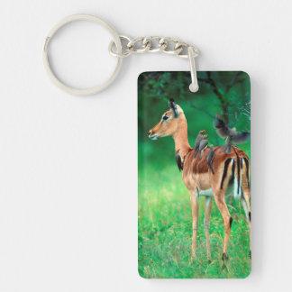 Impala (Aepyceros Melampus) Double-Sided Rectangular Acrylic Keychain