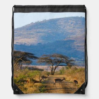 Impala (Aepyceros Melampus), Hluhluwe-Umfolozi Drawstring Backpack