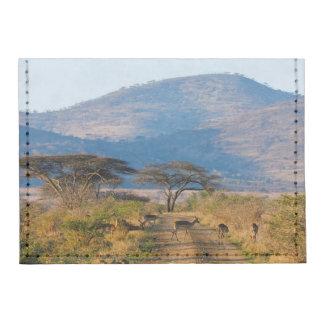 Impala (Aepyceros Melampus), Hluhluwe-Umfolozi Tyvek® Card Wallet