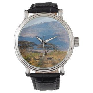 Impala (Aepyceros Melampus), Hluhluwe-Umfolozi Wristwatches