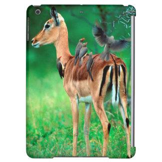 Impala (Aepyceros Melampus) iPad Air Case