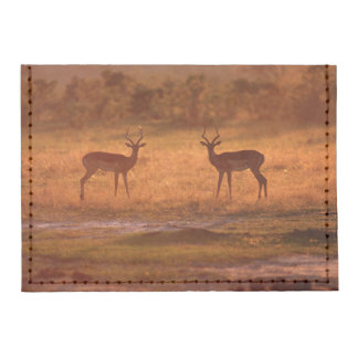 Impala (Aepyceros Melampus) Rams At Sunset Tyvek® Card Case Wallet