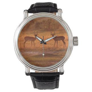 Impala (Aepyceros Melampus) Rams At Sunset Wristwatch