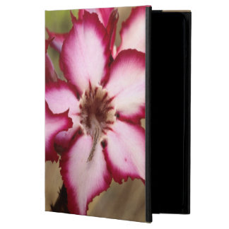 Impala Lily (Adenium Multiflorum), Kruger Cover For iPad Air