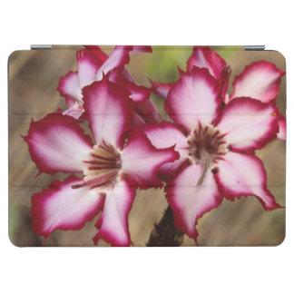 Impala Lily (Adenium Multiflorum), Kruger iPad Air Cover