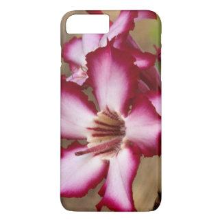 Impala Lily (Adenium Multiflorum), Kruger iPhone 8 Plus/7 Plus Case