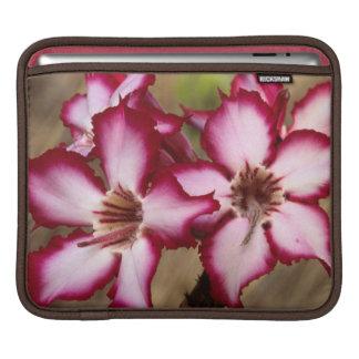 Impala Lily (Adenium Multiflorum), Kruger Sleeve For iPads