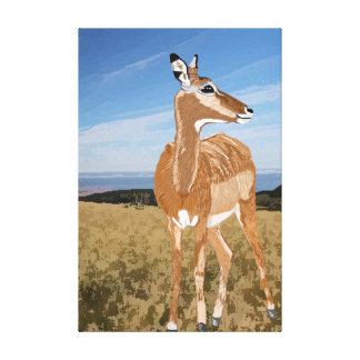 Impala On The African Grassland Gallery Wrapped Canvas