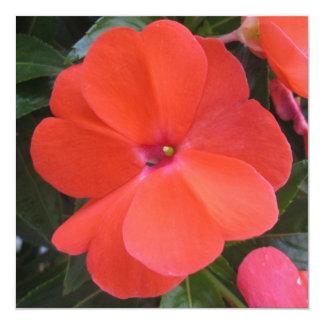 Impatien Orange New Guinea Invitations