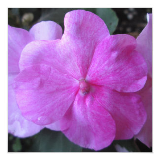 Impatien Purple Garden Flower Personalized Invite
