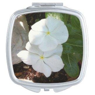 Impatien White Plant Compact Mirror
