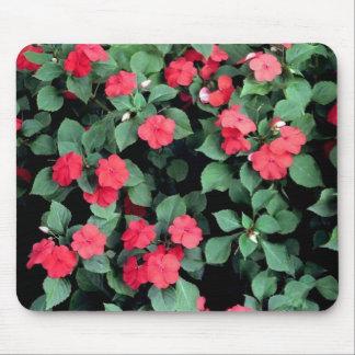 Impatiens Flowers Mouse Pad