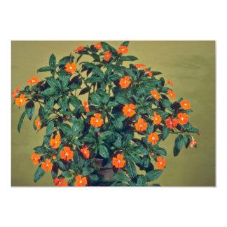 Impatiens, Orange glow Pink flowers Personalized Invite