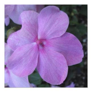 Impatiens Pink Purple Flower Custom Announcement