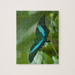 Imperial Butterfly Jigsaw Puzzle