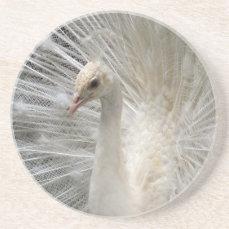 Imperial Peacock Coaster