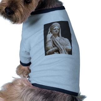 Imperial Roman women - statue Pet T-shirt