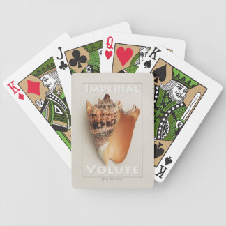 Imperial Volute Shell Bicycle Playing Cards