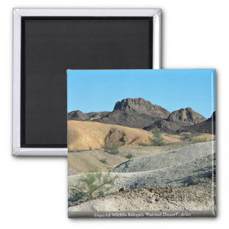"Imperial Wildlife Refuge's ""Painted Desert"", Arizo Magnet"