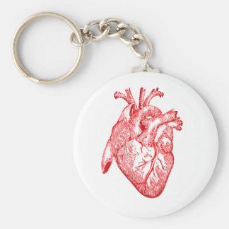 Imperio anatómico Ruhl del llavero del corazón