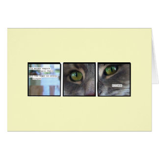 Imperio del gato tarjeta