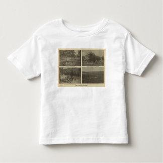 Imperio interior de las escenas camisas
