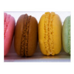 Imported gourmet French macarons (macaroons) Postcard