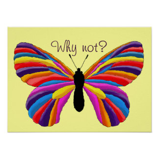 Impossible Butterfly - Why Not? Poster