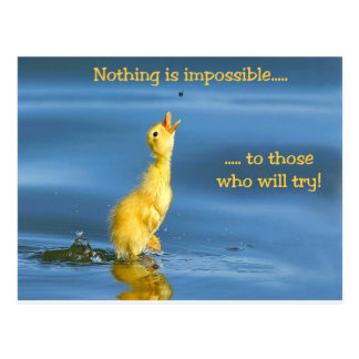 Impossible Duck Post Card
