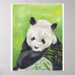 Impresión 11x14 de la panda poster