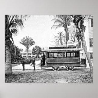 Impresión 1909 de la carretilla de la Florida del  Póster