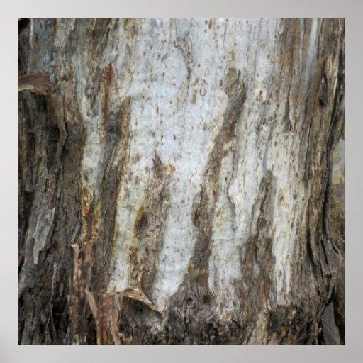 Impresión 5 del modelo de la corteza de árbol impresiones