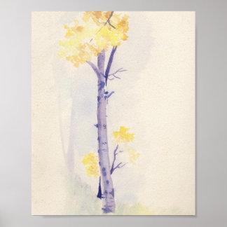 Impresión 8x10 del árbol de abedul posters