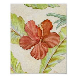 Impresión 8x10 del arte del hibisco póster