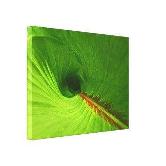 Impresión abstracta de la lona del espiral del jen impresion de lienzo