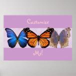 Impresión adaptable de tres mariposas bonitas poster