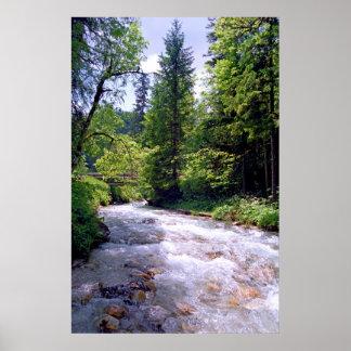 Impresión alpina de la corriente póster
