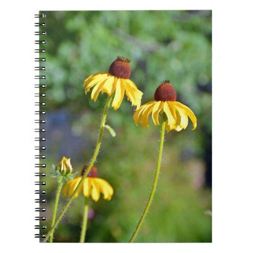 Impresión amarilla de las flores del echinacea cuadernos