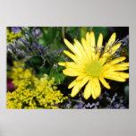 Impresión amarilla del arreglo floral de la margar poster
