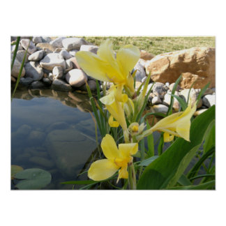 Impresión amarilla del poster de la flor del lirio