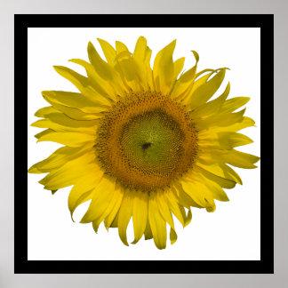 Impresión amarilla del poster del girasol