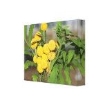 Impresión amarilla dulce de las flores lienzo envuelto para galerías