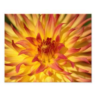 Impresión amarilla y roja ardiente de la bella art fotografías
