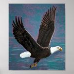 Impresión americana de Eagle calvo Impresiones
