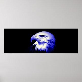 Impresión americana del poster de Eagle calvo