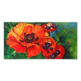 Impresión anaranjada de la foto de las amapolas or